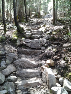 Picture of trail
